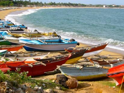 Sri Lanka 046